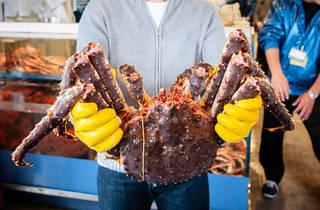 Hokkaido king crab – stock photo