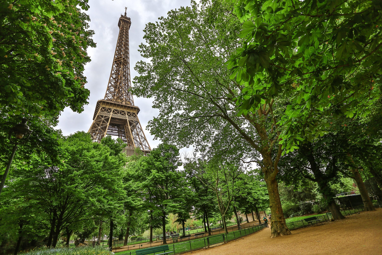 La ville de Paris va planter 170 000 arbres pour végétaliser la capitale
