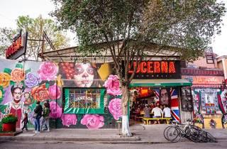 Comedor Lucerna, cocina versátil en la Juárez
