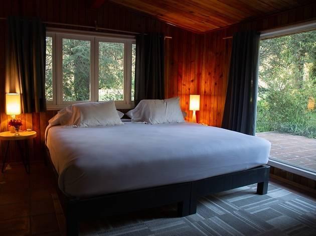 Habitación con ventanas con vista al bosque