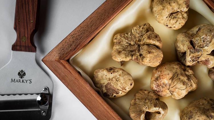 Carbone Alba white truffles