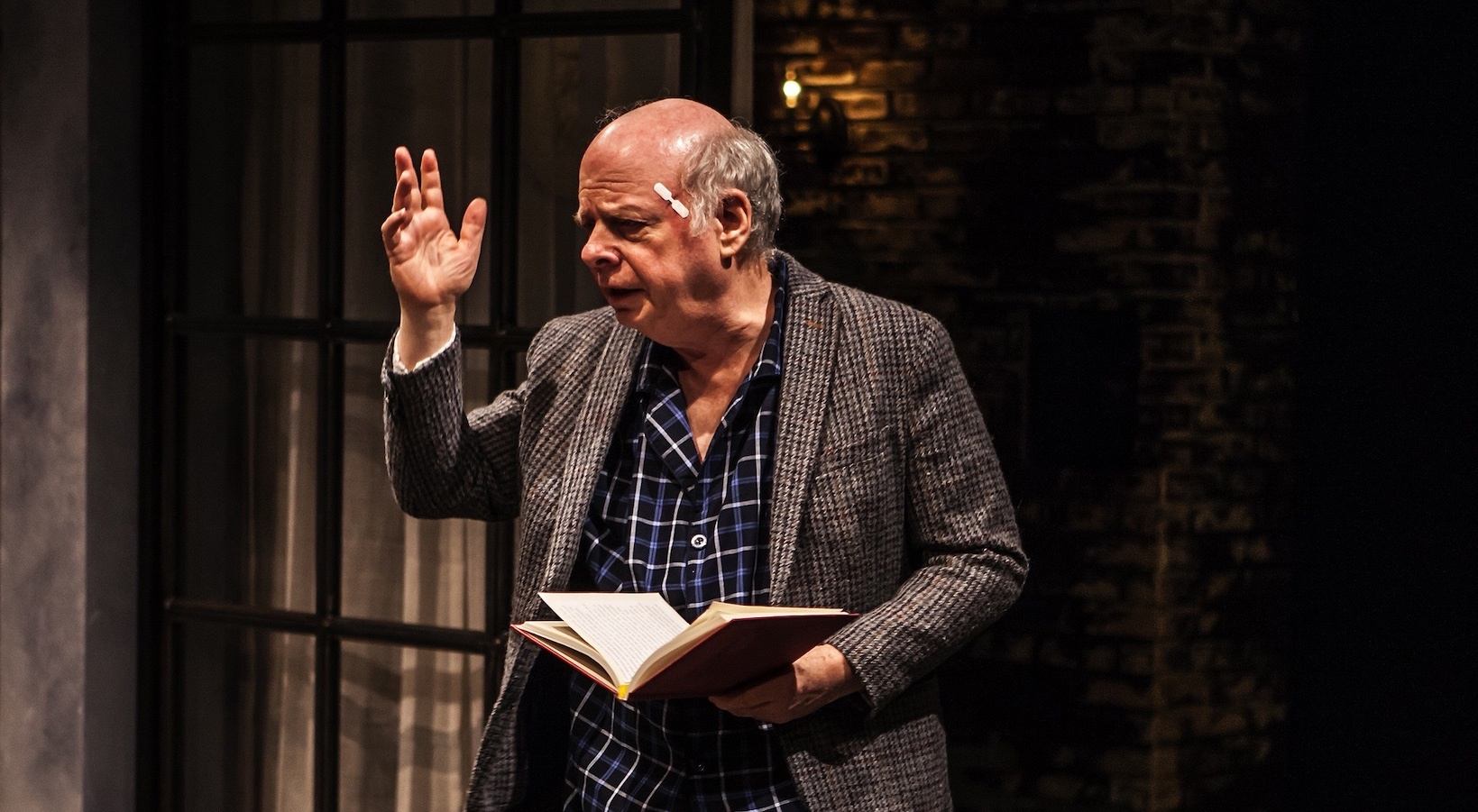 Wallace Shawn in Evening at the Talk House
