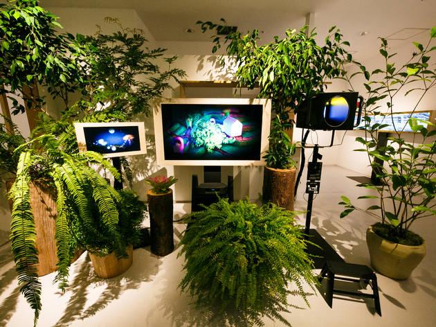 Designart Tokyo 2020
