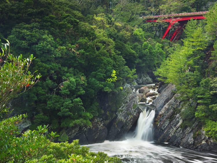 屋久島国立公園