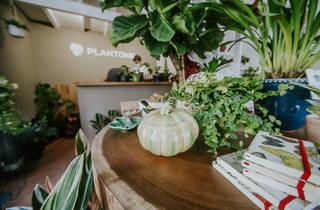 Plantome
