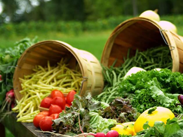 Eating You Alive, documental sobre el veganismo