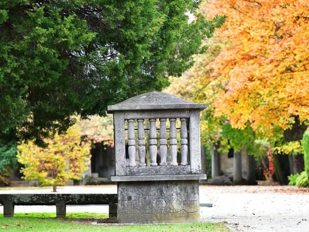 Čakovec: Jesenske vizure na Gradskom groblju