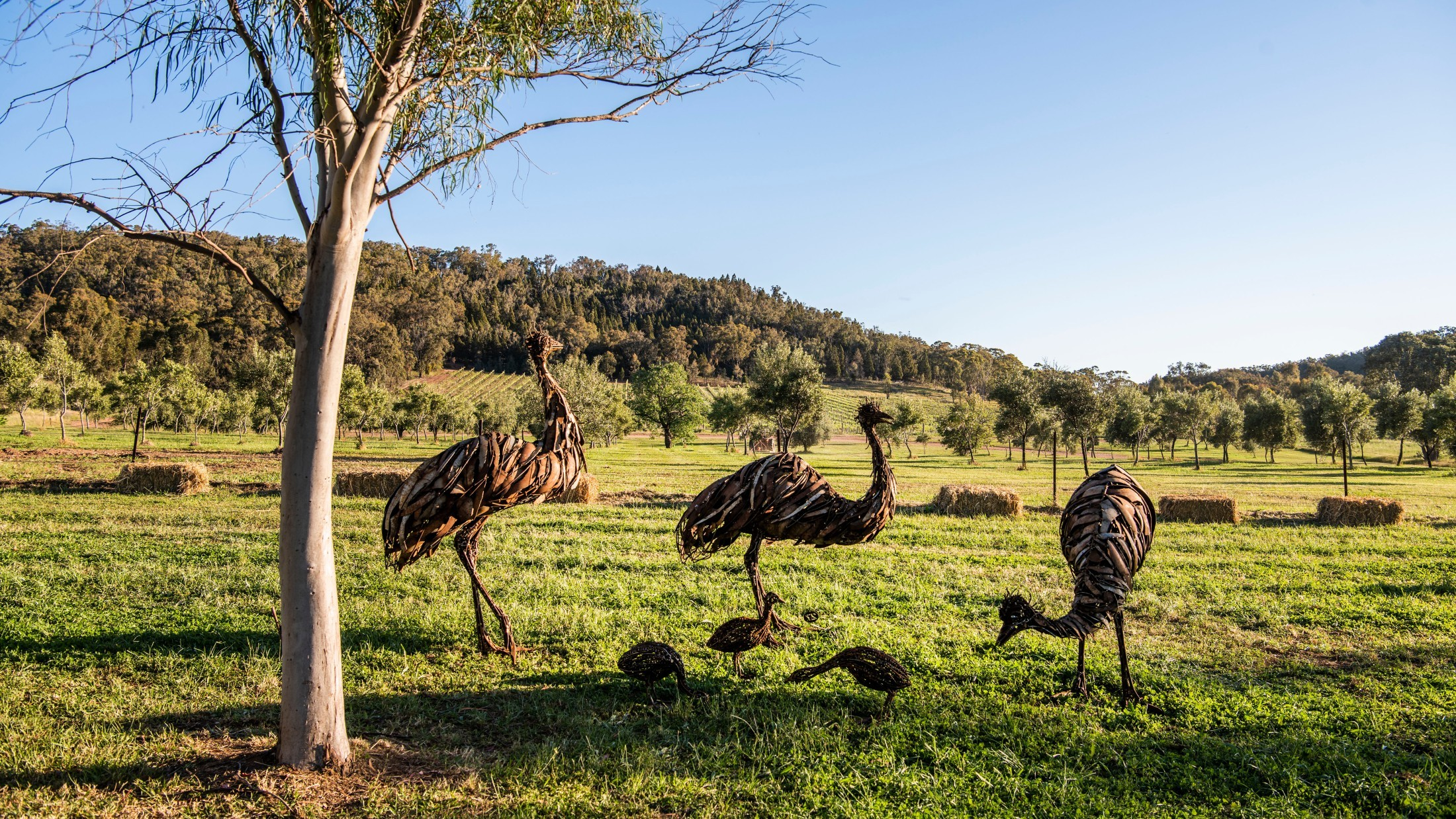 Sculptures in the Garden at Rosby Wines