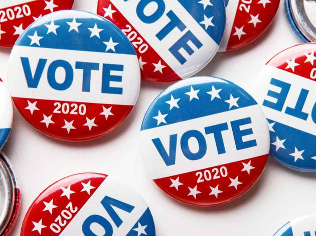 Vote, button, pin, election, 2020, voting