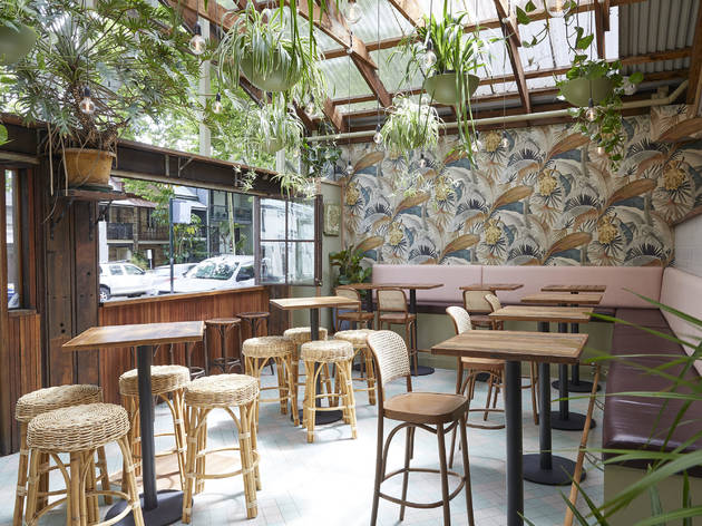 An atrium with tall bar tables and stools, The Forresters hanging plants and botanical wallpaper
