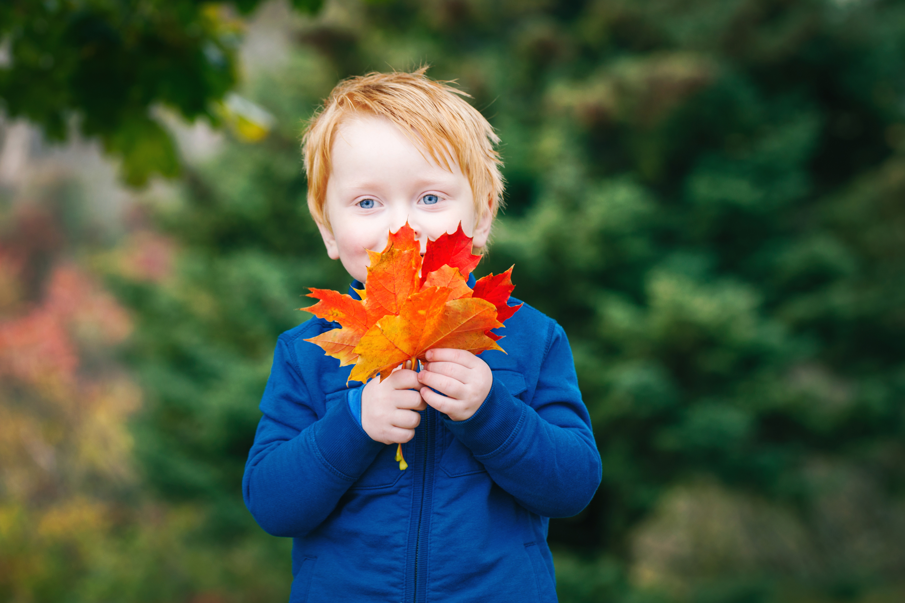 The best fall activities for kids in NYC