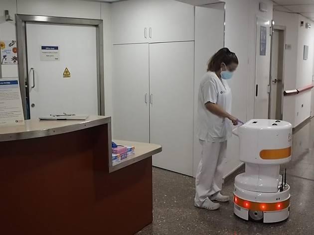 Robot TIAGo Delivery
