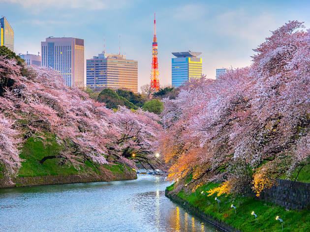 Tokyo in Japan