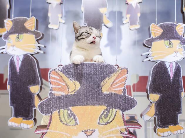 Cat Art by Shu Yamamoto