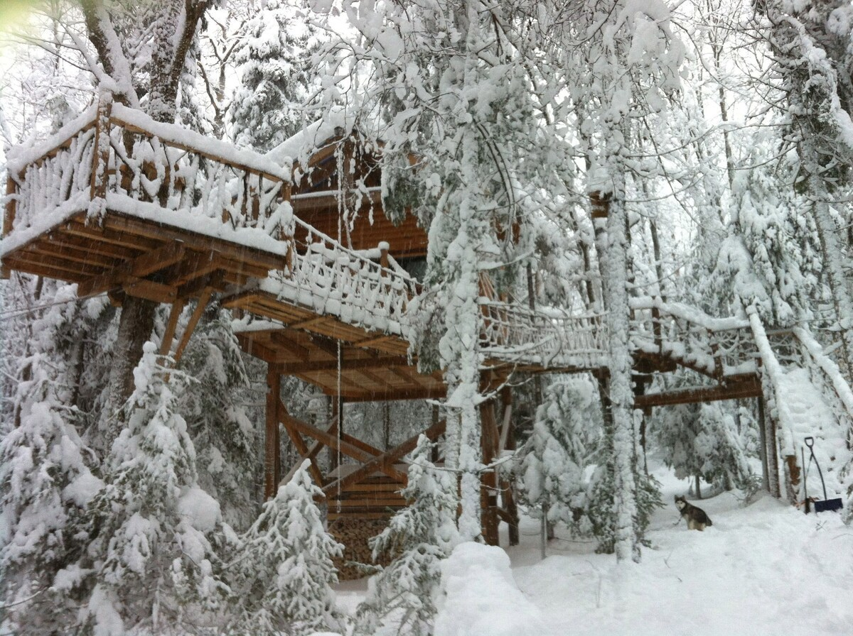 Perched Chalet Treehouse in Nominingue, Québec