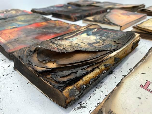 'Cultura assetjada: Fahrenheit 451', Joan Fontcuberta