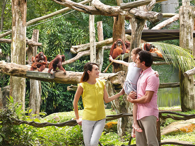 Wildlife Reserves Singapore (WRS)