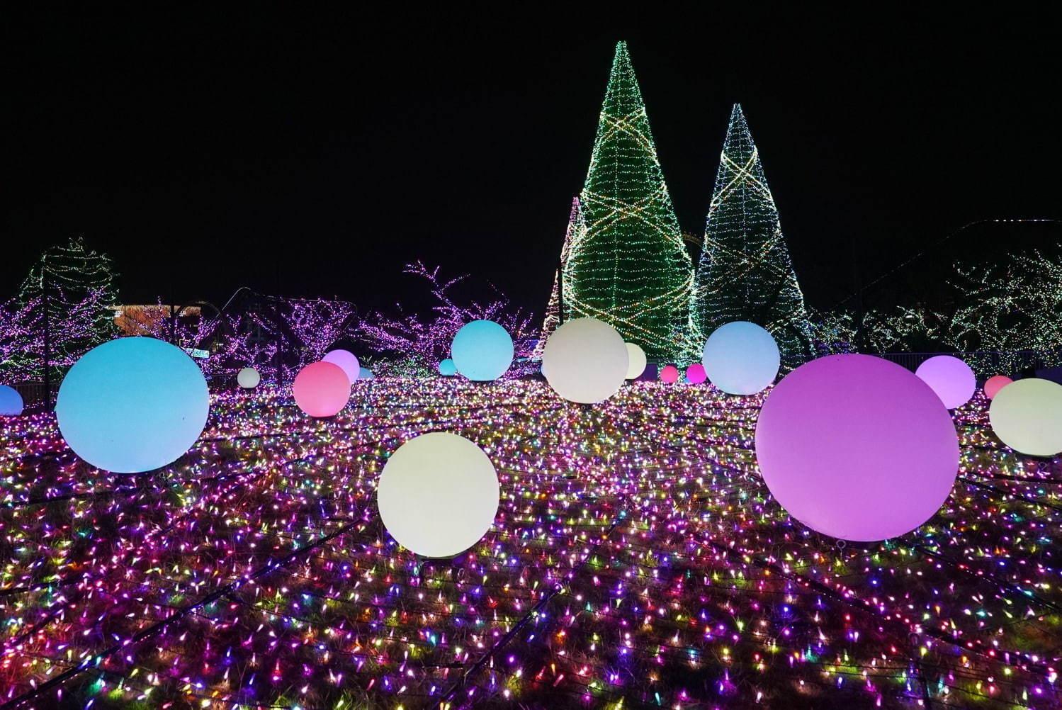 Yomiuri Land Jewellumination