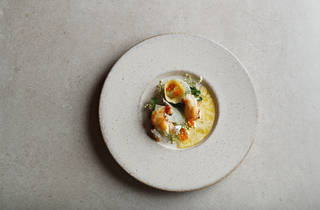 A plate of ornate shellfish and herbs from Aria