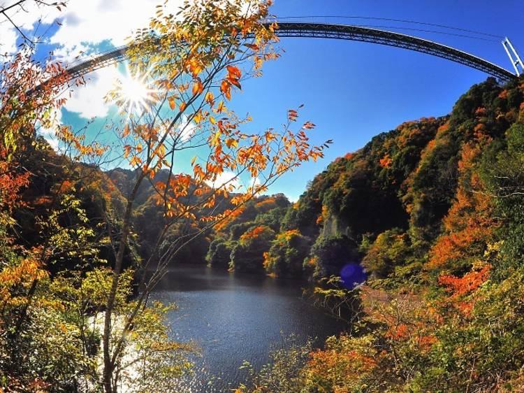 ハイキングで秋を満喫する。