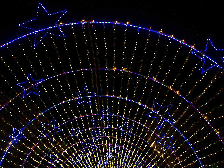holiday lights tunnel