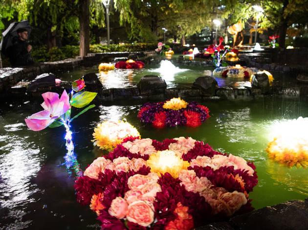 Rangoli-inspired installation made of floating flowers