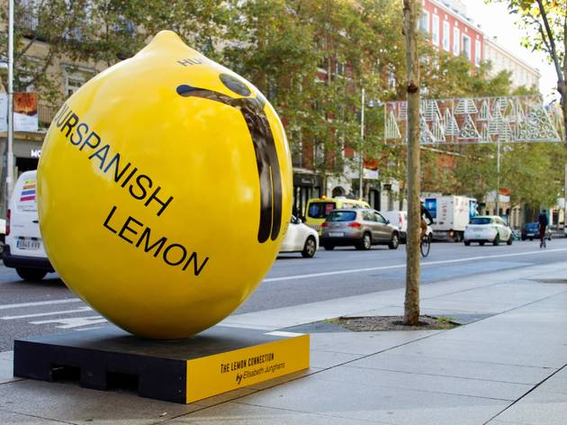 The Lemon Exhibition Tour