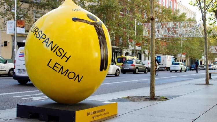 The Lemon Exhibition Tour