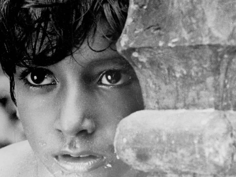 La trilogía de Apu (1955, 1956, 1959)