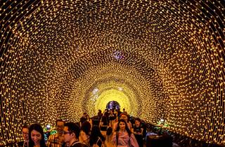Christmas Wonderland 2019