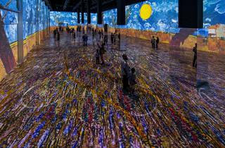 Immersive Van Gogh Exhibit