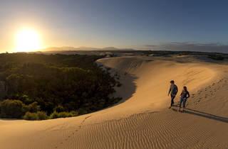 Big Drift - Wilsons Promontory National Park