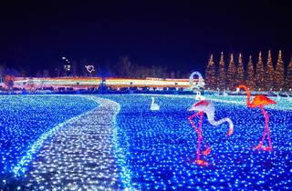 Tobu Zoo Winter Illumination
