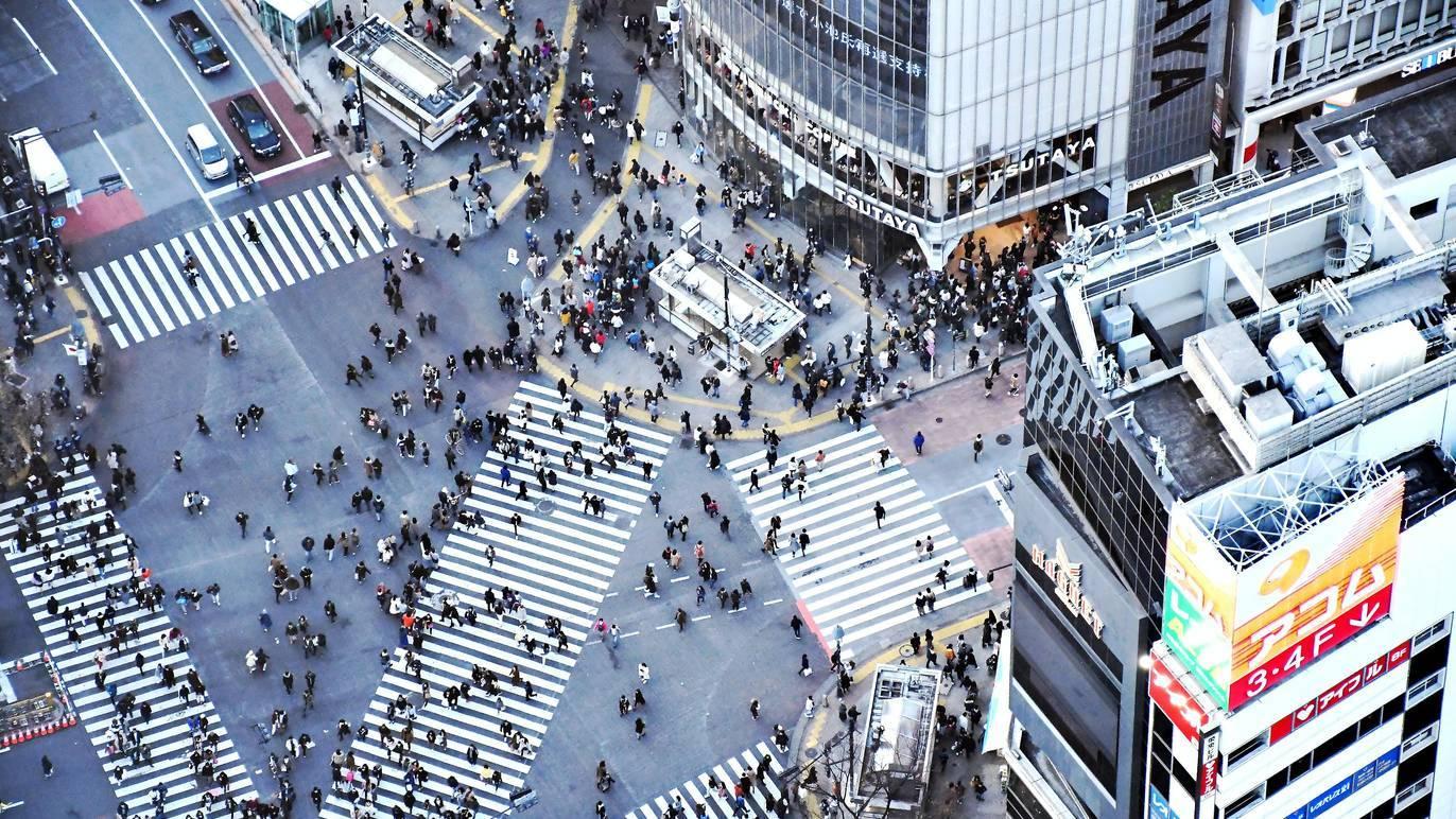 日本がグーグル提供の新型コロナウイルス予測を採用
