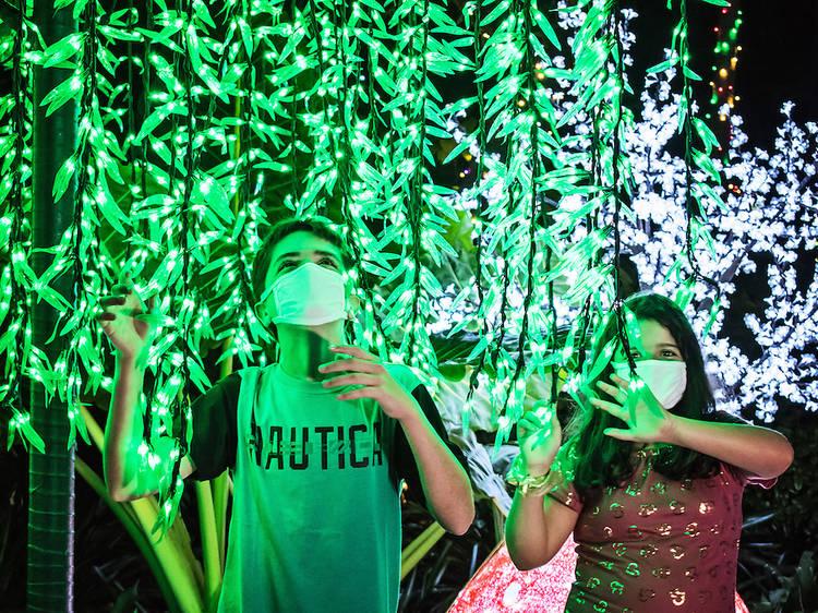 Pinecrest Gardens' Nights of Lights