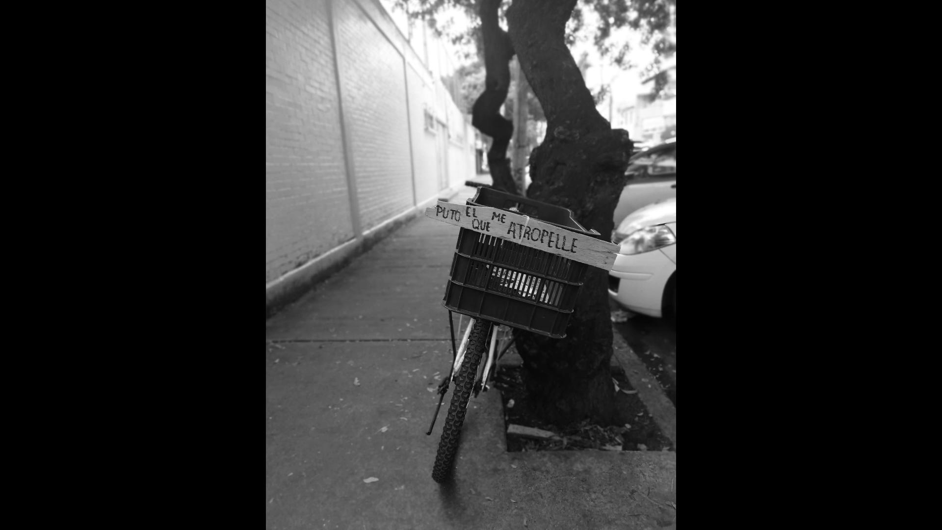 Bicicleta recargad en un árbol