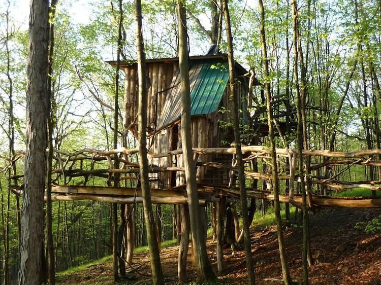 West Pawlet, VT: The Hermit Thrush Treehouse