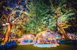 Chijmes Christmas dome