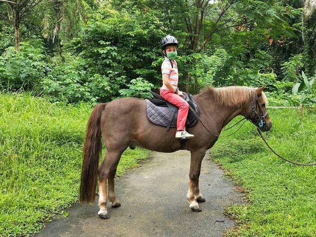 National Equestrian Centre