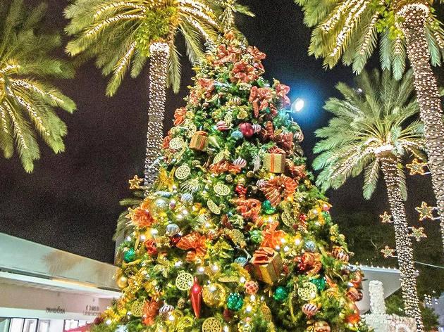 Lincoln Road Christmas tree