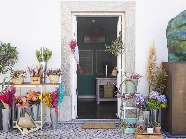 D. Amélia - Flower Bar