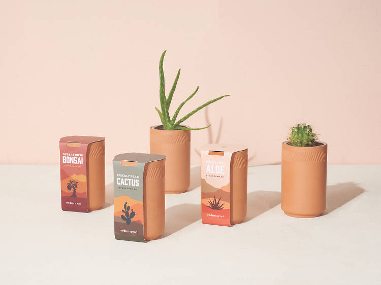 Hydroponic tumbler garden kits, Modern Sprout ($30)
