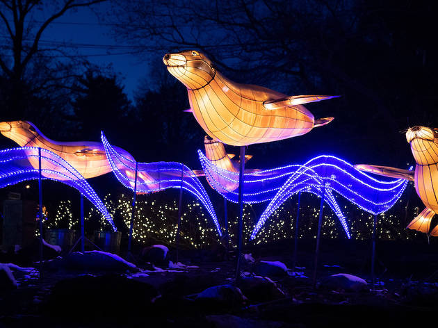 bronx zoo holiday lights show