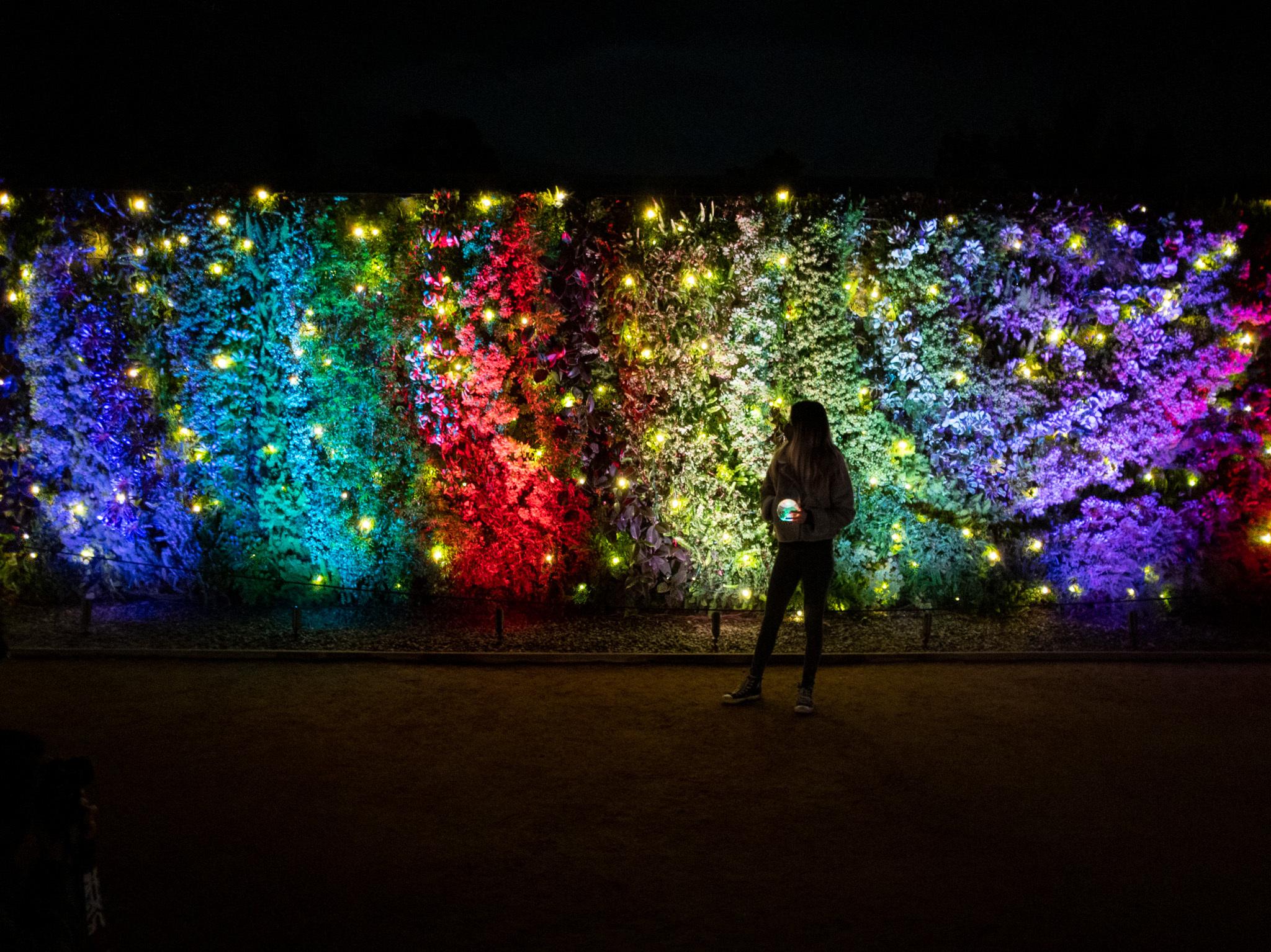 South Coast Botanic Garden S Glow Illuminates The Grounds