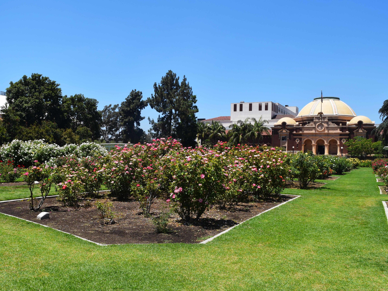 Exposition Park Rose Garden, Los Angeles