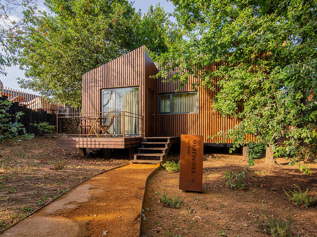 Há cinco bungalows no meio da natureza