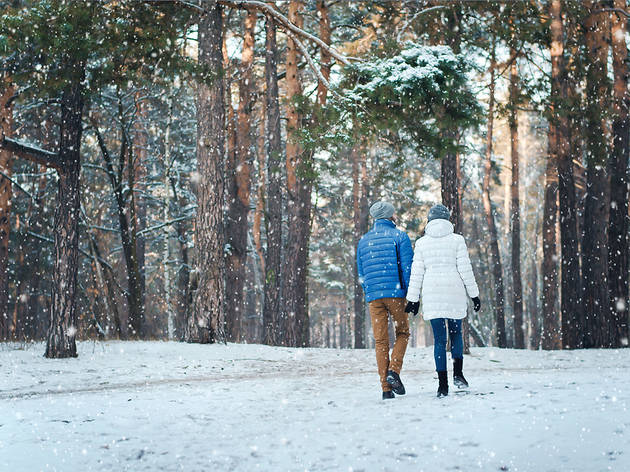 People walking in the snow