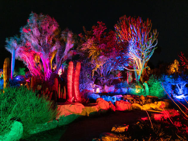 South Coast Botanic Garden's GLOW