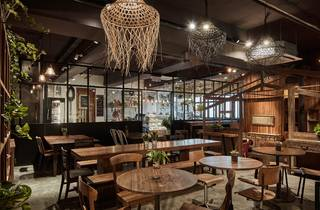 Tree Cafe interior