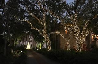 Deering Estate Holiday Stroll